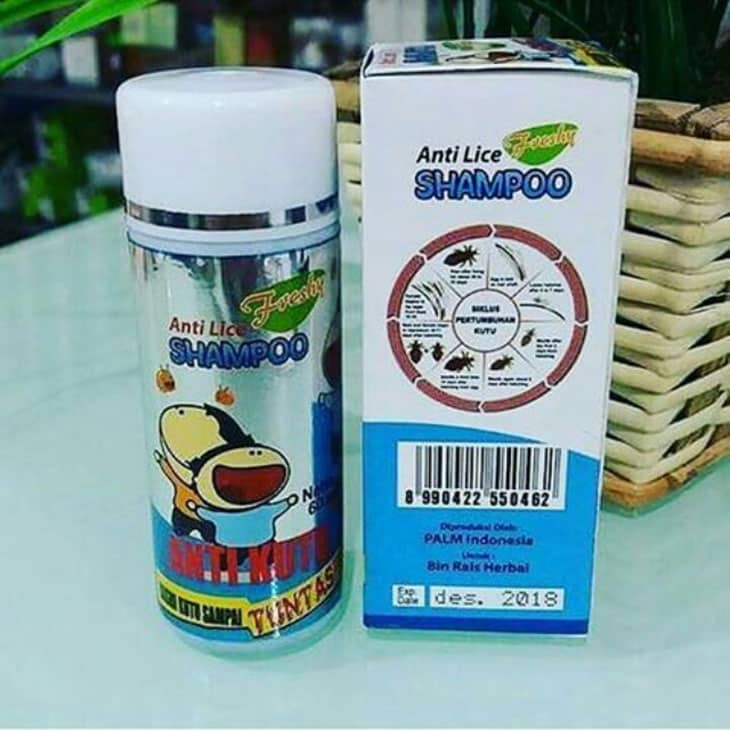 Shampoo Anti Kutu Anti Lice Freshy
